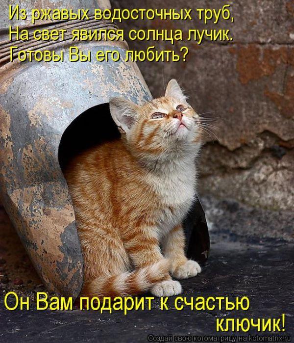 1396293042_mysli-vsluh-6.jpg