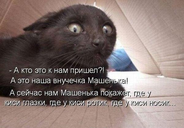 1396293044_mysli-vsluh-3.jpg