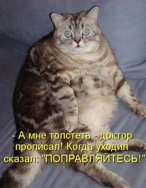 1396293054_mysli-vsluh-2.jpg