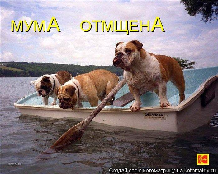 1396293092_mysli-vsluh-7.jpg