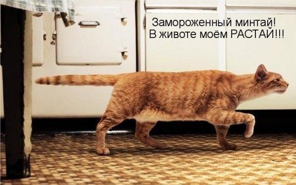 1396293096_mysli-vsluh-16.jpg
