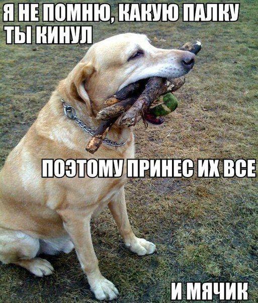 1396293107_mysli-vsluh-4.jpg