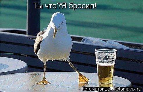 1396293129_mysli-vsluh-14.jpg