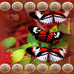 KALENDARI-2020-8.th.jpg