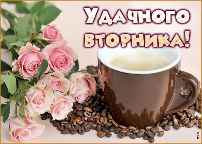 udachnaya-kartinka-s-vtornikom-91248.jpg