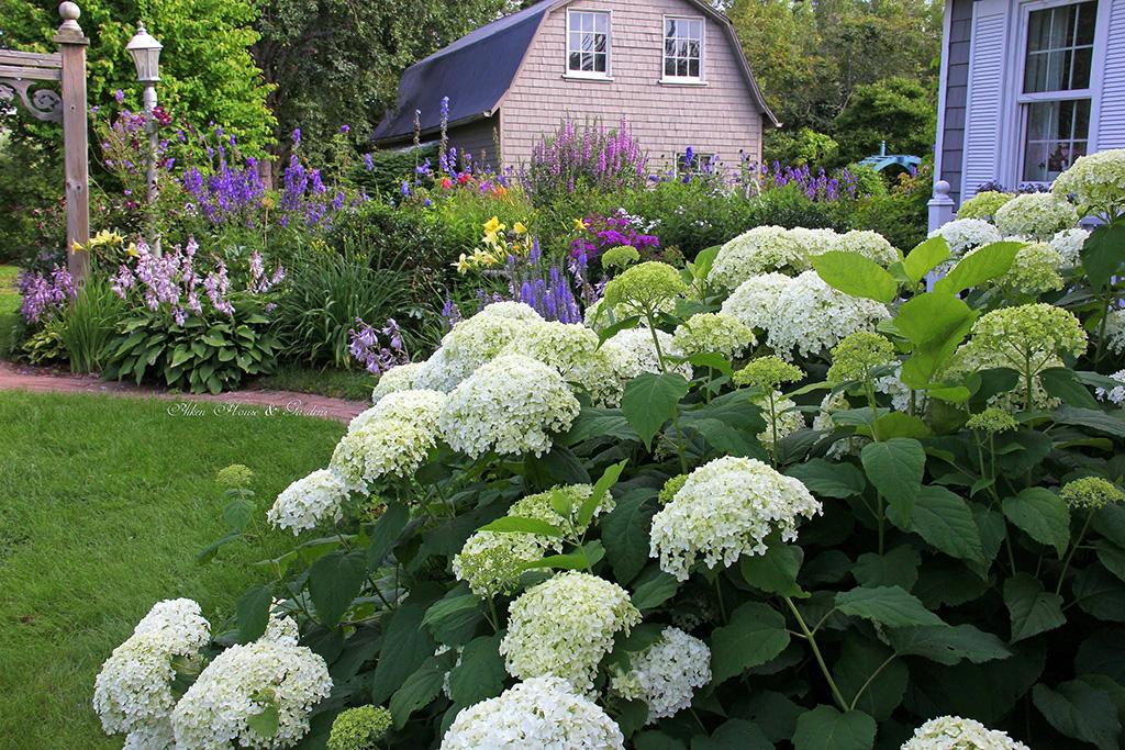 Aiken-House--Gardens.jpg