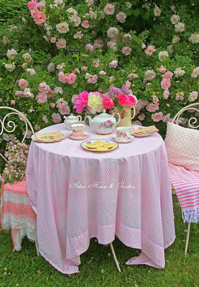 rose-t-IMG_2139.jpg