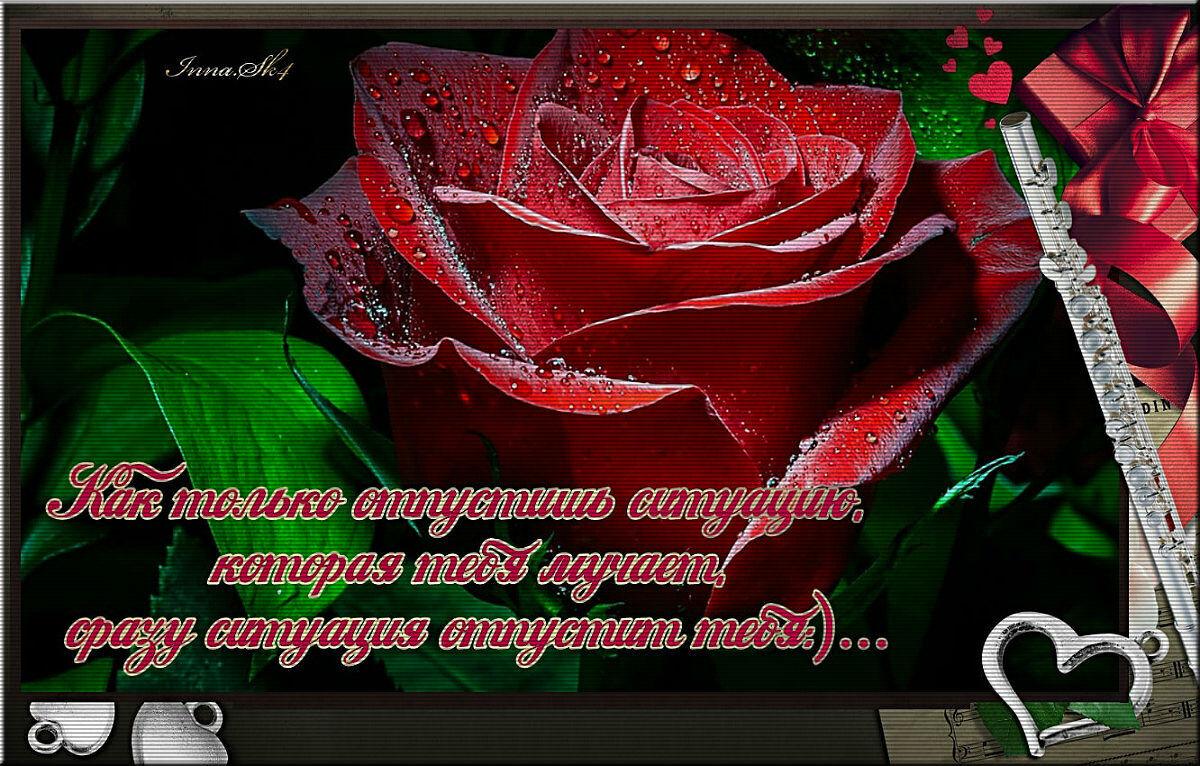 imageedit 19 3032508313